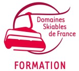 Logo DSF Formation